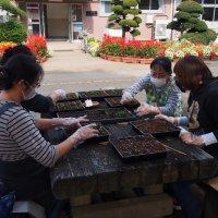 花壇の整備作業ボランティア